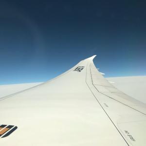ベトナムへの空の旅