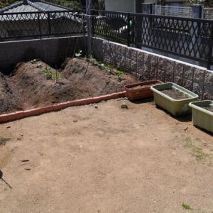夏野菜 植え付け完了!
