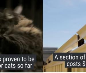 動画:猫が庭の壁を越えられない回転棒