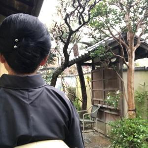 髪ゆってもらい 白椿の刺繍半襟に大島^_^雨の日のコーデ