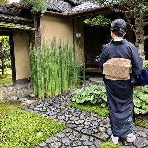 半年ぶりの弘道館月釜 大広間に7名のみ 贅沢な空間
