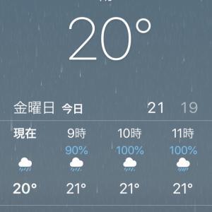 雨でももちろん着物を着ます!大雨も平気な備え いろいろ^_^