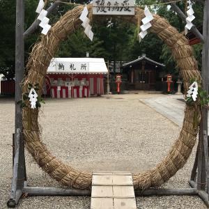 祇園祭のお茶花 祇園守 境内で見つけた!