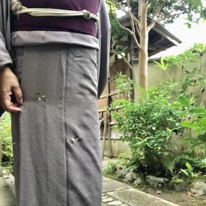 自分で購入した最初の単衣 頻度高くお気に入り 帯は菊の塩瀬