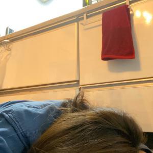 台所で寝ること増えそう