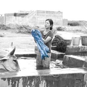 向井詩織 個展 < Shiori Mukai Textile Solo exhibition >