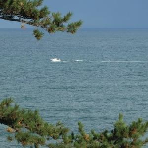 朝の日本海