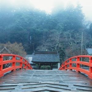 雨の室生寺