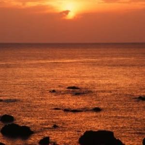 すさみ海岸の夕日と今朝のチョコ