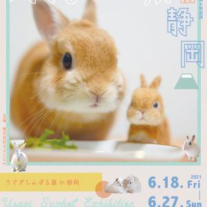 【うさぎしんぼる展in静岡】参加します。