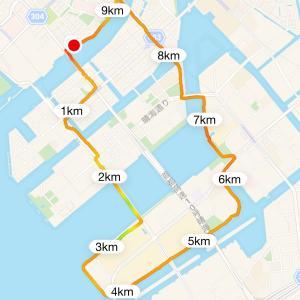 朝から10キロ近く、散歩