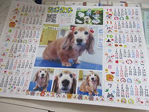 オリジナル『うちの子カレンダー』配布中~♪