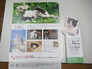 『岩合さんの写真展』チケットプレゼント♪