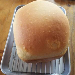 台風への備えって?      ついでに最近のパン