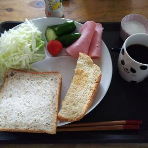 最近の朝昼ご飯    動いたら食う