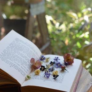 お庭のお花のドライフラワー