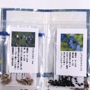 ブログ友 ブルーミント5さんから花の種 そして「モネの池」
