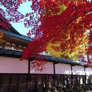 茅野市・長円寺の紅葉