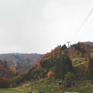 Go to travel 2日目温泉で惚ける