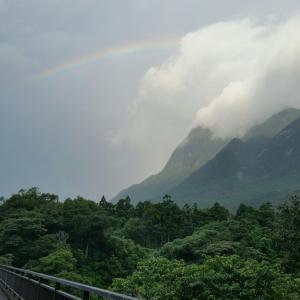 ウォーキングと虹とピリ君と