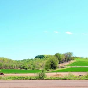暑さと田園風景