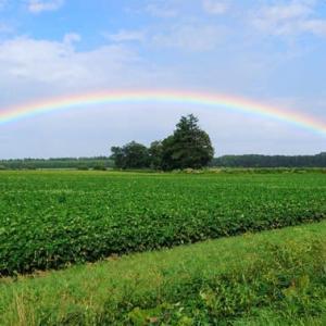 二度現れたきれいで大きな虹