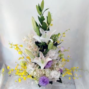 これから数日お花のご紹介のみに