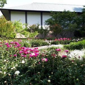 神宮美術館の庭園