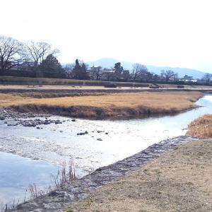 日帰り京都 ☆