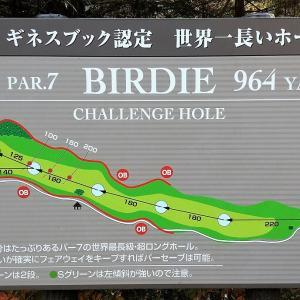 ギネス認定 世界一長いホール 皐月ゴルフ倶楽部 佐野コース