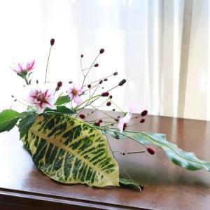 【いけばな】秋らしい花材で