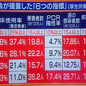 新型コロナ ~ 日本の 気になる 議論