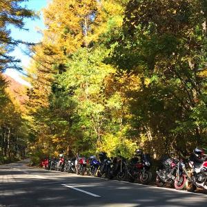 10月20日みんなでツーリング紅葉水上尾瀬コースのお知らせ