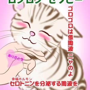 ロンロン セラピー<猫のゴロゴロで幸せホルモン>