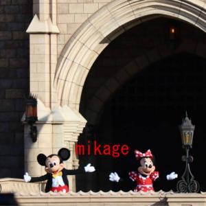 現地 城前ミッキー!!