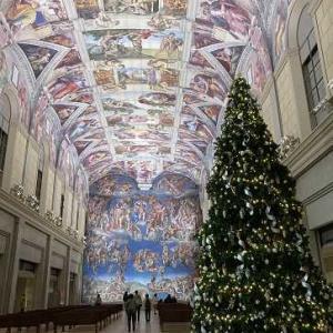 2020 11月に処分した数 と 大きな二本のクリスマスツリー