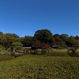 おばあさんの東京散歩