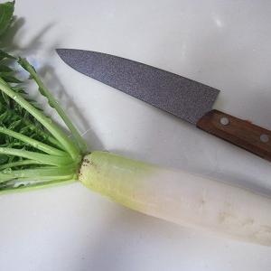 収穫時を迎えた野菜たち