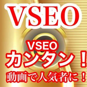 VSEOとは ご協力お願いいたします。・゚(´□`)゚・。