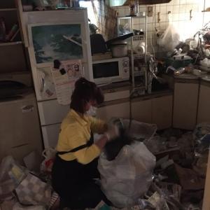 ゴミが捨てられなくなる日が来る