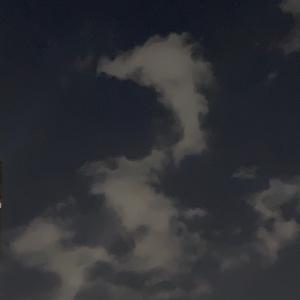 龍雲を見つけたら…★