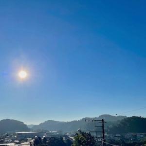 鎌倉は秋晴れで、散歩がてら期日前投票に