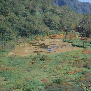 ちょっと早めの紅葉を見にテン泊 @妙高山・火打山