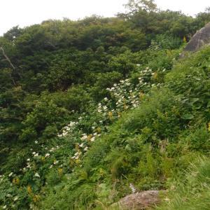 北アルプス縦走に向けて自主トレ @谷川岳西黒