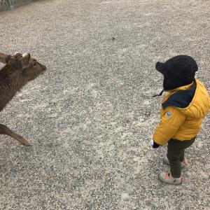 子どもをのびのびと育てるコツ