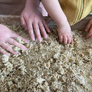 子どもと作る手作り味噌