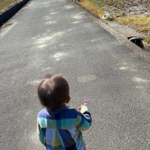 春を探しにお散歩