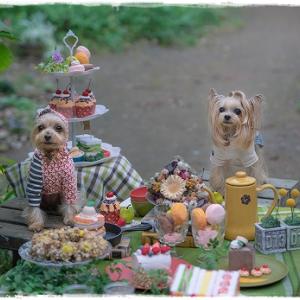 メインフォトブースは、ガーデンパーティーでした。