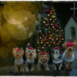 聖歌隊から「メリークリスマス」2020。