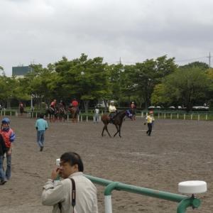 函館2歳Sと函館記念では、「藤沢和雄厩舎で学んだ元乗り役」に注目です